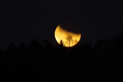 Mondfinsternis 10. Dezember 2011